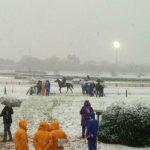 【画像】東京競馬場、雪国になっててワロタwwwwwwwww