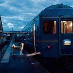 【画像】秋田県の観光ポスターの秋田犬がじわじわと話題にwwwwww