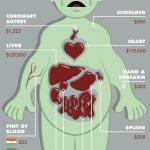 闇市で取引される臓器の値段wwwwwwwwww