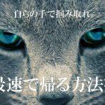 【画像】「全日本もう帰りたい協会」の心に響く画像を貼ってくださいwwwwwww