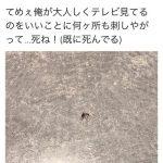 【画像】蚊を潰したTwitterユーザー、アカウントを凍結されるwwwwwwww
