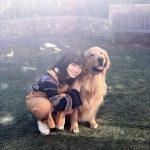 橋本環奈の愛犬w.w.w.w.w.w.w.ww.w.w