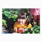 本田仁美ちゃんの子供の頃がいちご大福にそっくりwwww