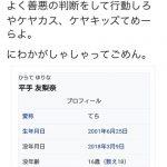 【悲報】欅坂平手アンチのケヤキッズ、越えてはいけないラインを越えてしまう……【民度】