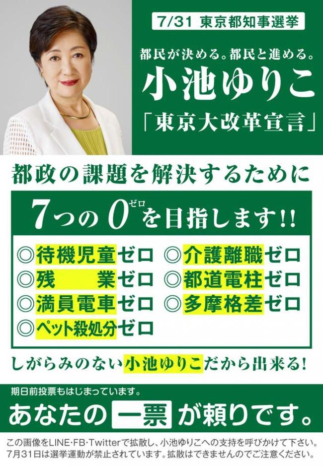 小池百合子が選挙の時に掲げた公約がこちら