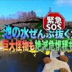【悲報】「池の水ぜんぶ抜く」を専門家が批判wwwwww