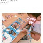 【画像】吉澤ひとみの件でモー娘仲間のブログ見たけど工作ハンパないのなwwwwwww