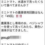 1カ月で100万円稼ぐブロガー「日本の野菜は農薬まみれ。この洗剤を使って」と宣伝→デマと判明で炎上wwwwwww