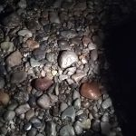 【画像】ワイバイク乗り、このレベルの石のサイズに無念の帰宅wwwwwwwwww