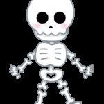 【悲報】高校の美術用デッサンに使われていた頭蓋骨、本物だった