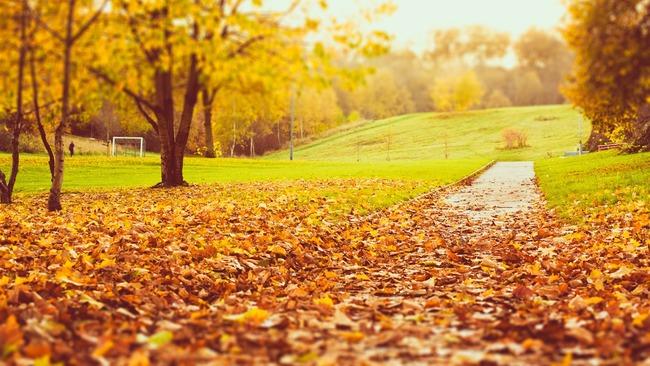 秋とかいう無能wwwwwww