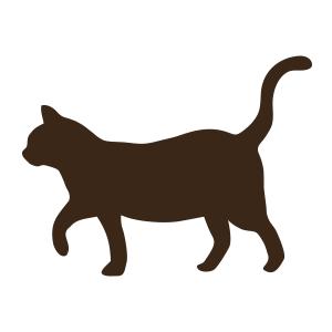 【画像】有り得ないくらい長い足を持つネコがネットで話題にwwwwwwww