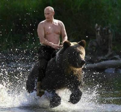 【爆笑注意】プーチン大統領の「クスッと笑える」画像が集まるスレwwwwwwww